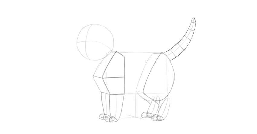 how to draw cat tail
