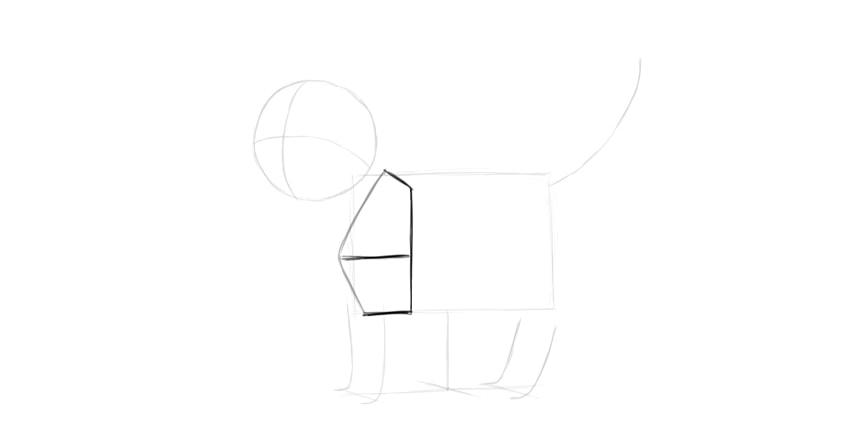 cat shoulder drawing