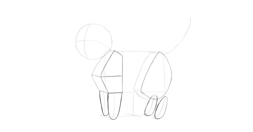 cat legs drawing