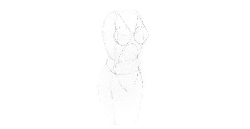 how to draw female torso