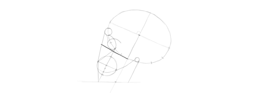 drawing skull where to place the eye