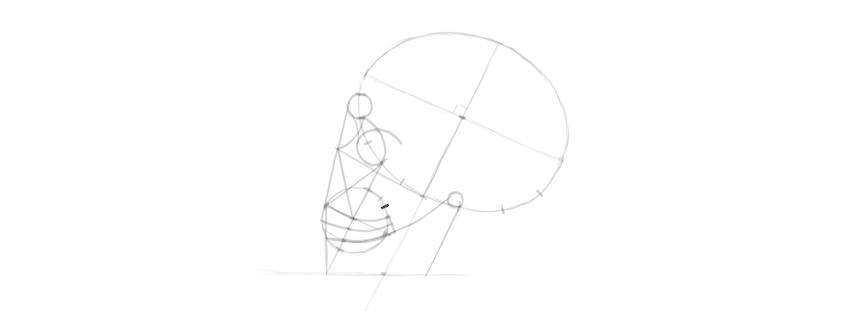 drawing skull details
