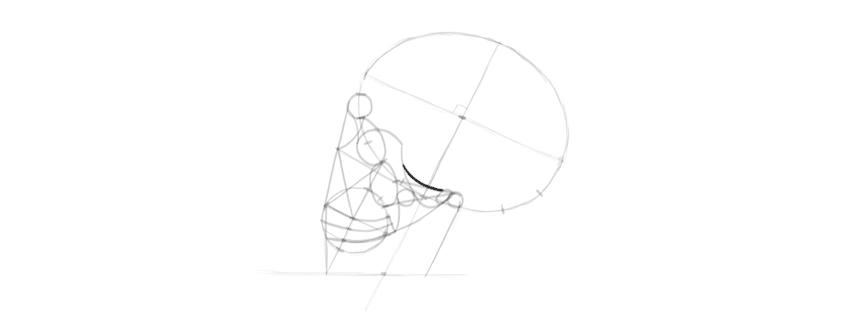 drawing skull eye socket ridge