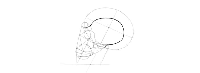 drawing skull temple
