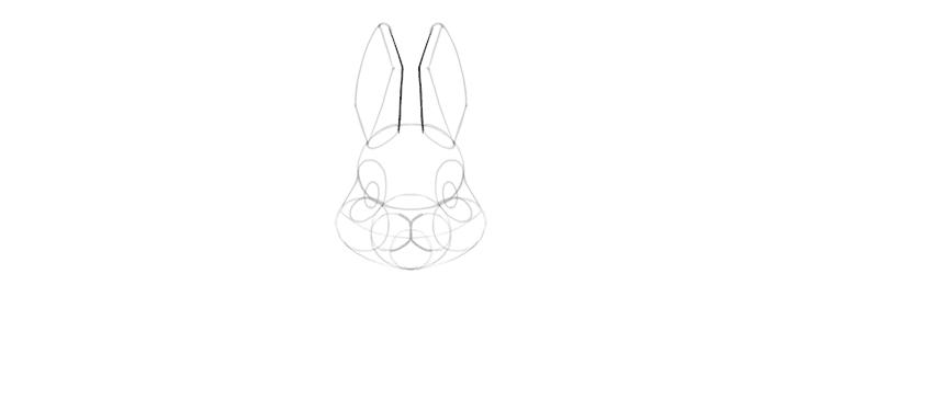 bunny ears drawing