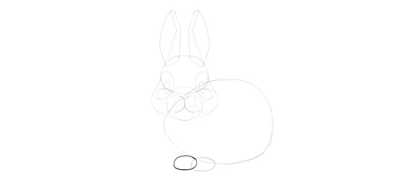 bunny forepaws