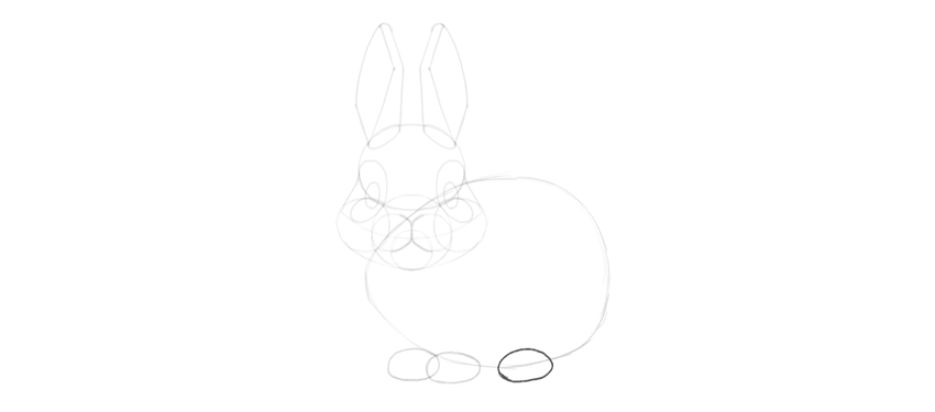 bunny hind paws