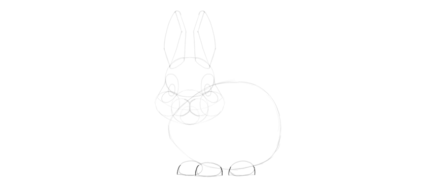 bunny paws shape detailed
