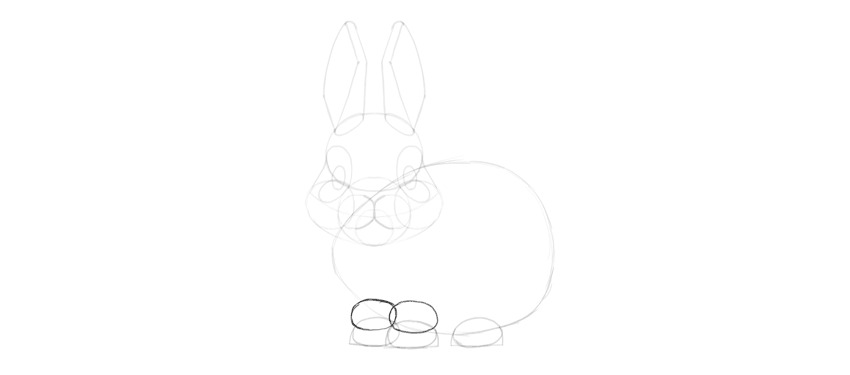 bunny legs