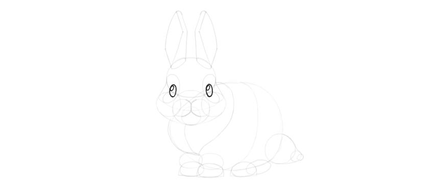 bunny shine dots eyes