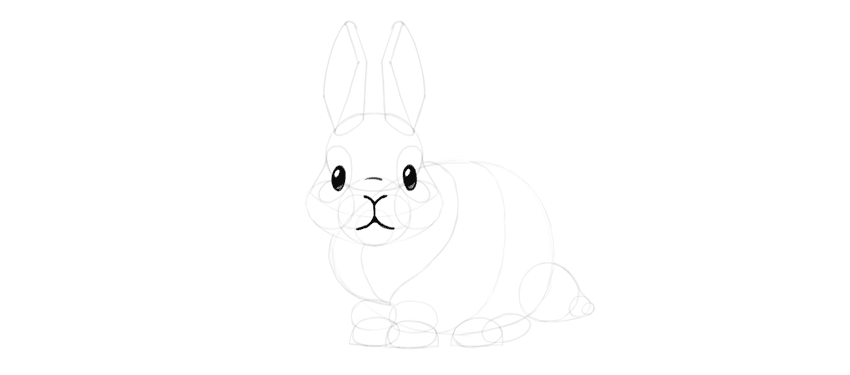 bunny mouth detail
