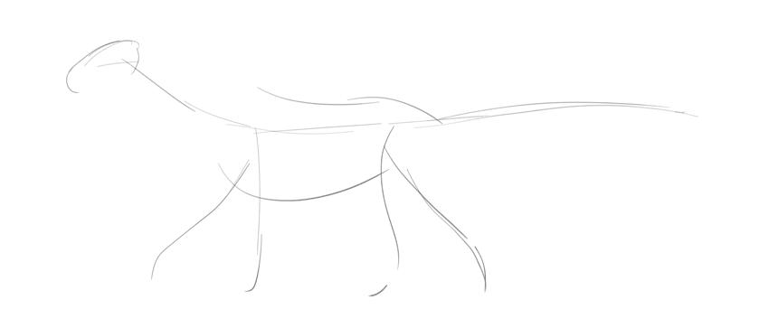 dragon sketch base