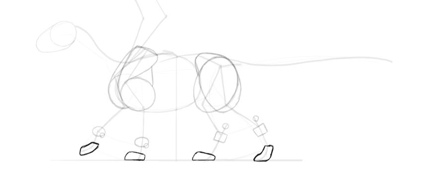 dragon paws shape