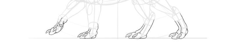 dragon feet outline