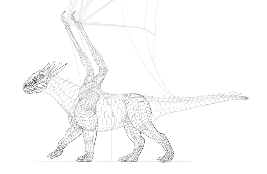 dragon how to draw scales