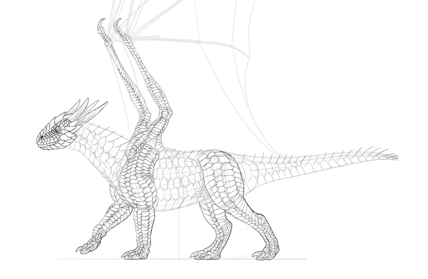 dragon scales outlines