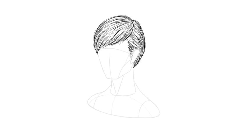 short hair stray