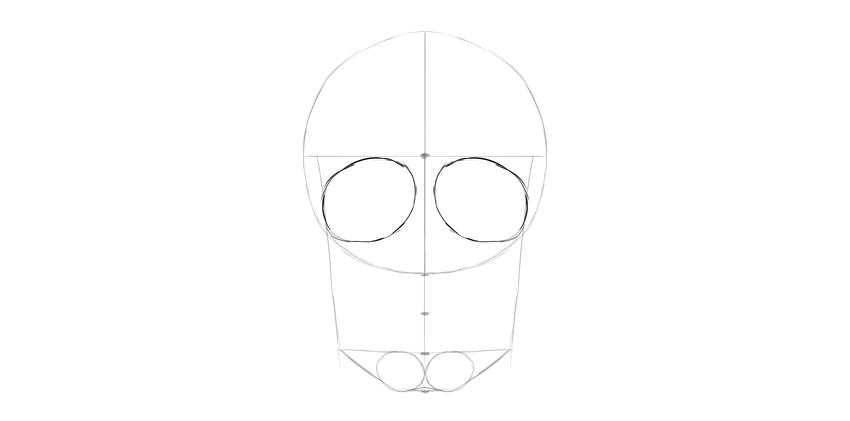 human skull eye sockets general