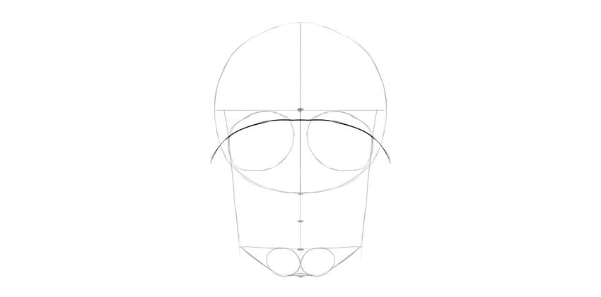 human skull eyebrow