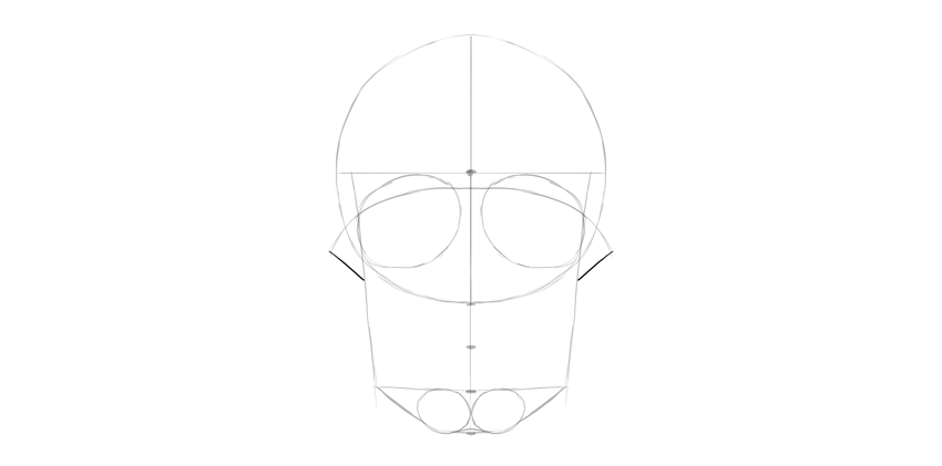 human skull cheekbones