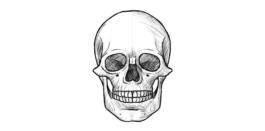 human skull dark outline