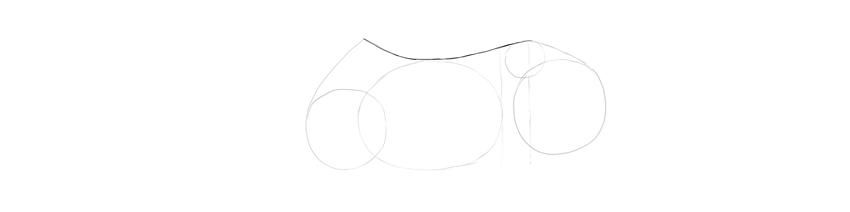 horse drawing back curve