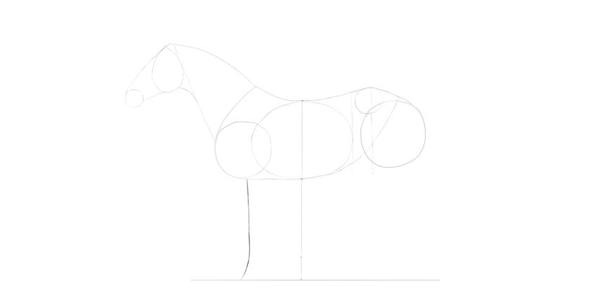 horse drawing foreleg