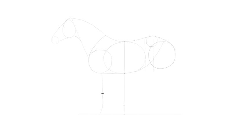 horse drawing foreleg center