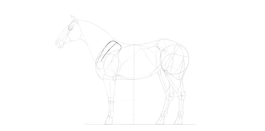 horse drawing shoudler blade