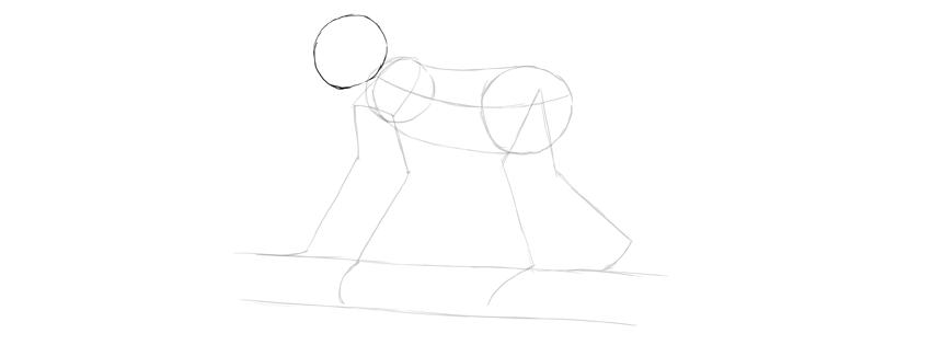 monkey drawing head shape