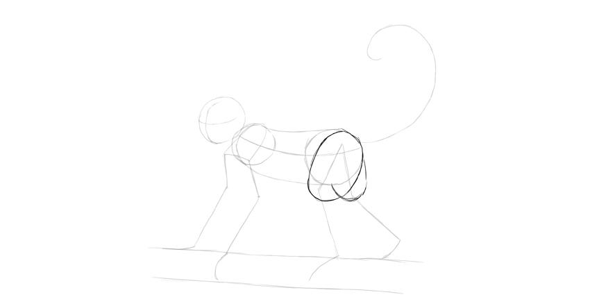 monkey drawing thighs shape