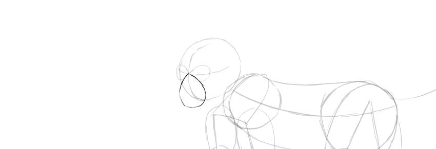 monkey drawing muzzle