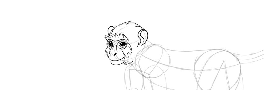monkey drawing head fur