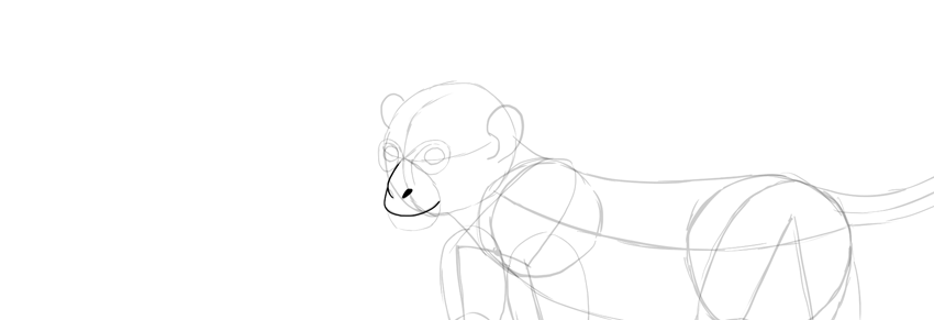 monkey drawing mouth detailed