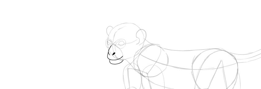monkey drawing lower lip