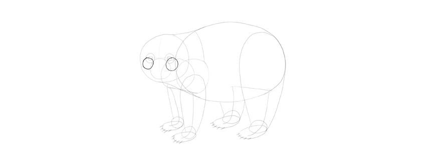 panda drawing eye patch