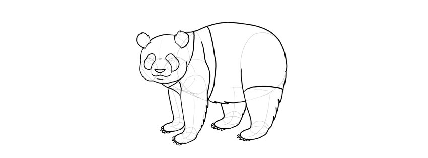 panda drawing pattern