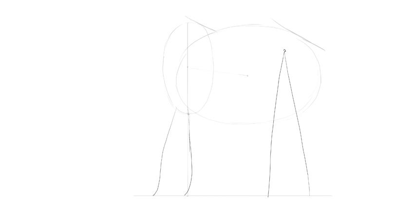 elephant legs position