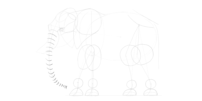 elephant trunk draw