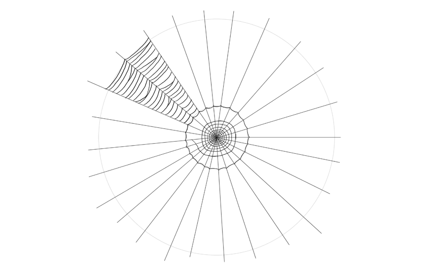 spider web drawing secdond section