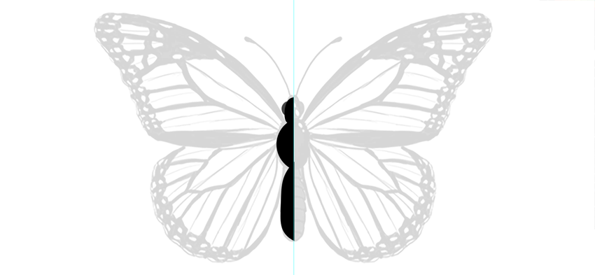 photoshop vector butterfly head