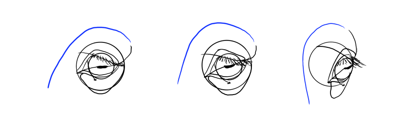 horse forehead in perspective