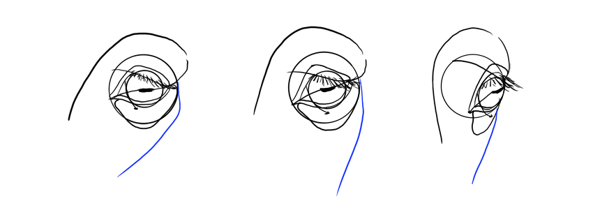 horse cheek in perspective