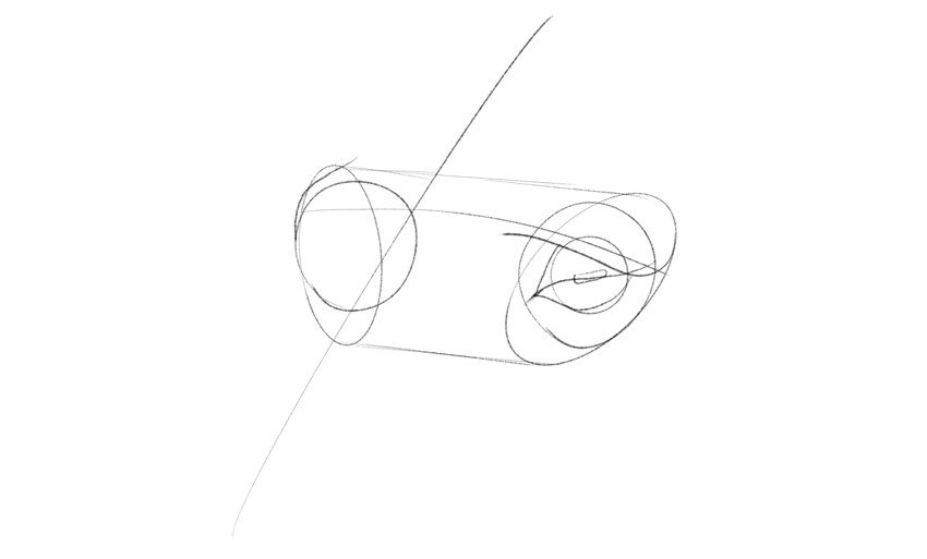 horse eyelid rims drawing