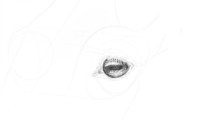 horse eye full iris shading