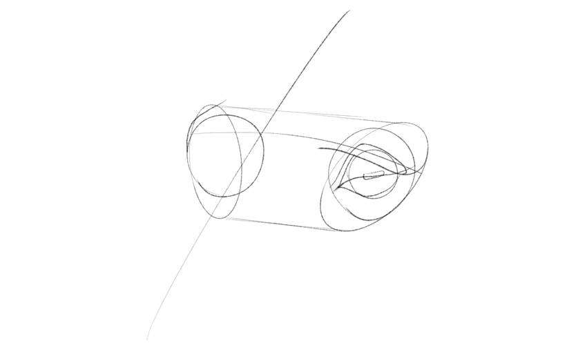 horse upper eyelid shape drawing