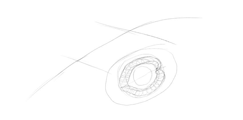 lizard detailed eyelids drawing
