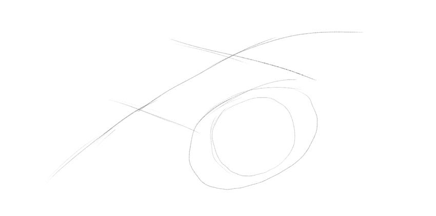 lizard eyeball drawing