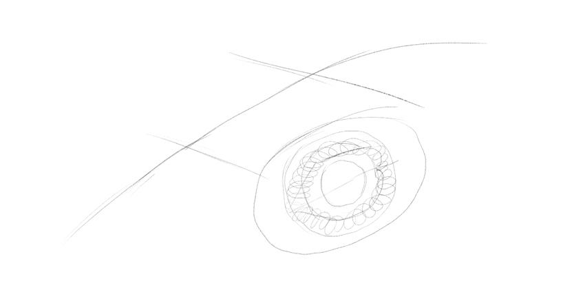 lizard eyelid thickness drawing