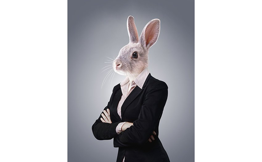rabbit woman anthro